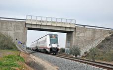 Pedro Saura: «En la región circulan trenes que cuentan con hasta cuarenta años»