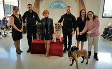 Una concejal 'casa' a dos perros policía para cumplir el deseo de una niña discapacitada