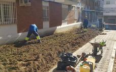 Arreglo de jardines en el barrio de Miralvalle
