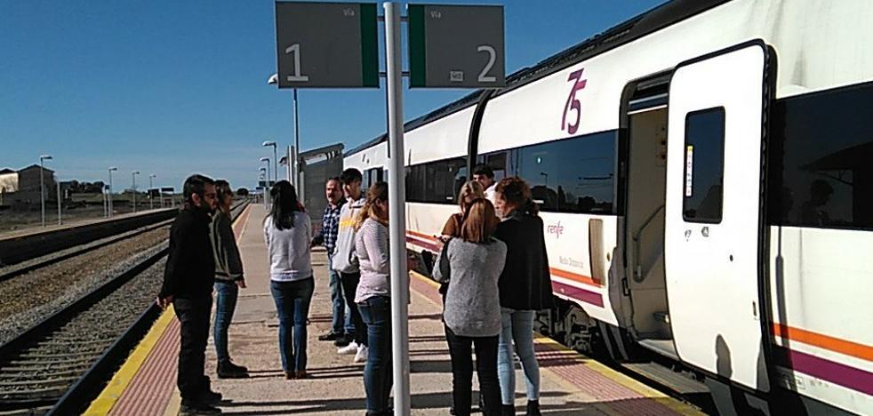 El Talgo Badajoz-Madrid arrolla a un rebaño de ovejas entre Navalmoral y Oropesa