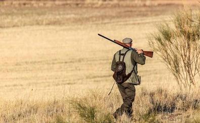 El Gobierno quiere equiparar las armas de juguete a los rifles de caza mayor
