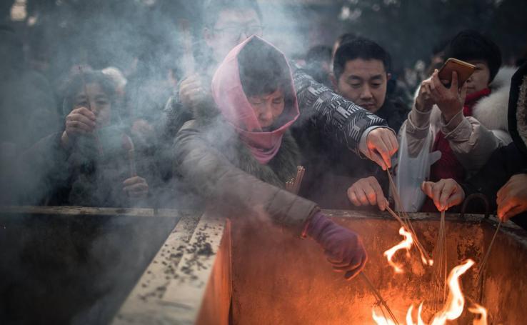 Los chinos reciben el Año del Cerdo