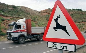 Los accidentes de tráfico provocados por animales crecen un 20% en tres años