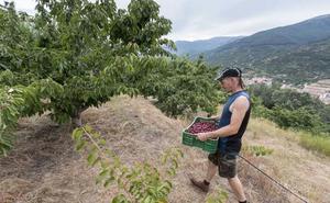 Convocados los premios autonómicos a la excelencia e innovación de jóvenes agricultores