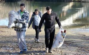 La lucha contra la basuraleza: 20.000 ciudadanos y 600 entidades