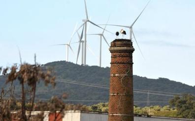 El primer parque eólico de Extremadura se inaugura mañana en Plasencia