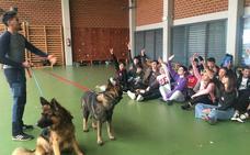Aprender valores con ayuda de perros