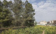 El Ayuntamiento construirá un campo de fútbol junto al seminario