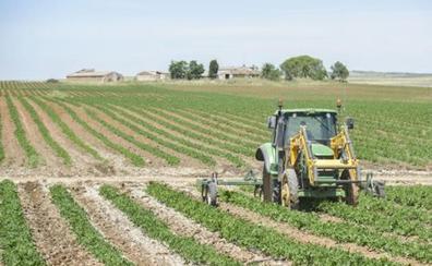 Extremadura repartirá 2,9 millones del pago básico a 376 agricultores