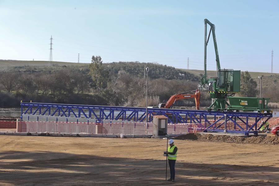 Las barreras de contención del camalote se instalarán en Badajoz si funcionan en Mérida