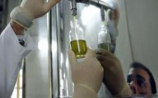 El precio en origen del aceite de oliva español ha caído un 30% en el último año