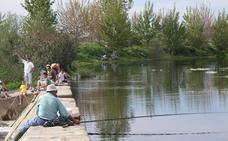 Pescadores de Alburquerque y Badajoz piden a Junta que autorice la suelta de truchas en el Gévora