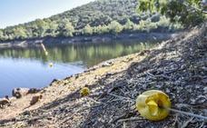 Extremadura registra un mes de febrero muy seco
