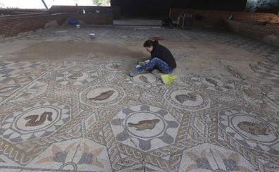 El Consorcio de Mérida limpia, consolida y reintegra los mosaicos de la Casa del Anfiteatro