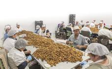 El negocio de la industria alimentaria extremeña crece un 13% en dos años