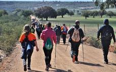 Organizan la tercera Ruta de las Mariposas en Casas de Miravete para un máximo de 300 participantes