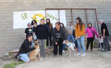 El Refugio de Brown de Zafra ya no alberga a animales abandonados