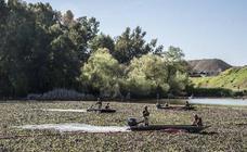 Badajoz despedirá a la UME tras su labor con el camalote