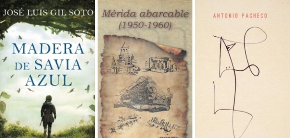 Mérida abarcable