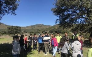 Alumnos del IES Benazaire de Herrera del Duque repueblan el paraje 'Las Navas'
