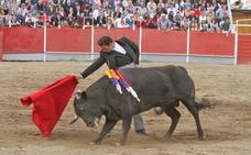 Cortan once orejas en el festival de la Feria del Toro de Coria