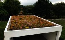 La Diputación de Badajoz elegirá una escuela de la provincia para instalar cubiertas vegetales