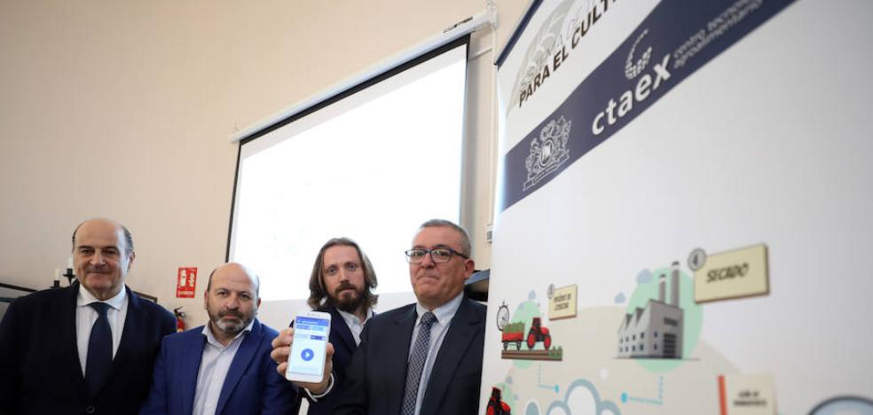 Una aplicación en el teléfono móvil para seguir el camino de la hoja de tabaco