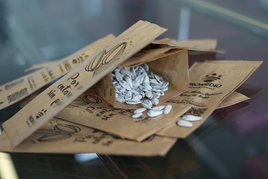 Promedio reparte 27.500 bolsas de papel para tirar cáscaras de pipas en Semana Santa