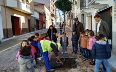 Hoy se enciende el alumbrado de la avenida de Yuste y la calle Soledad