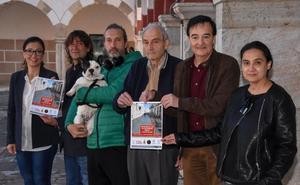 Seis asociaciones piden plataforma única desde José Lanot a Bravo Murillo
