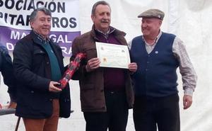 Más de 50 vinos en el concurso de pitarra de Madrigal