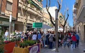 El Ayuntamiento de Don Benito busca gerente para dinamizar el comercio local