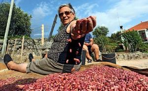 La Diputación de Cáceres convoca el VI Programa de Ideas Emprendedoras en el Mundo Rural