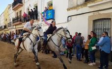 Los caballos atraviesan La Corredera en Arroyo de la Luz