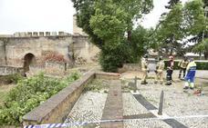 Un árbol se cae en la Alcazaba y hiere a un guía turístico de Badajoz