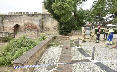 El 112 Extremadura registra 1.500 llamadas y 250 incidentes durante la alerta meteorológica