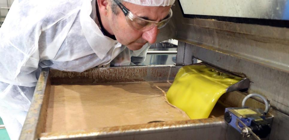 ¿Es mejor el aceite de secano o de regadío?: «La clave, la elaboración»