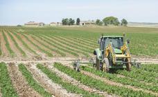 El plan renove llega este año a toda la maquinaria agrícola