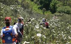 Más de 700 senderistas se dan cita en la ruta del Rey Jayón