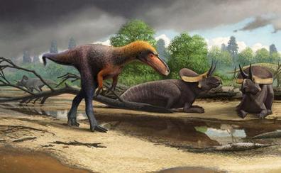 Descubren los restos fósiles de un primo pequeño del Tyrannosaurus rex