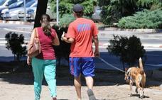 Extremadura, sin raza autóctona de perro reconocida pese a tener el naveño