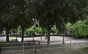Los vecinos denuncian que las pulgas pican a los niños en el parque Virgen de Bótoa de Badajoz