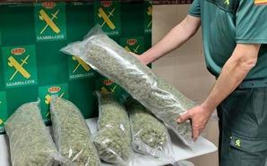 Detenido en la A-66 con más de seis kilos de cogollos de marihuana escondidos en su coche