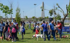 Badajoz celebra el domingo el Día de la Mascota en el parque del Guadiana