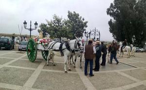 Cáritas Don Benito celebra el domingo su romería ecuestre solidaria