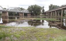 La Confederación Hidrográfica del Tajo no deja al Ayuntamiento que limpie el río a su paso por la ciudad