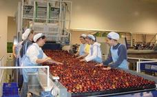 Las exportaciones de Extremadura crecen un 5,3% en marzo y alcanzan los 152,8 millones