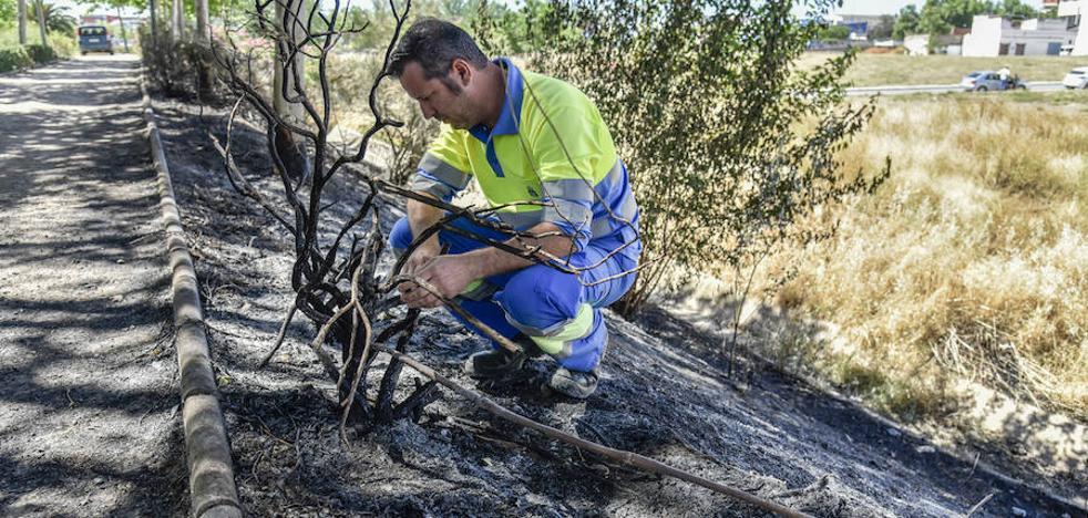 Los paseos del Rivillas y el Calamón de Badajoz sufren el décimo incendio en dos años