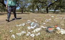 Los usuarios del parque de Tres Arroyos de Badajoz denuncian que está lleno de basura