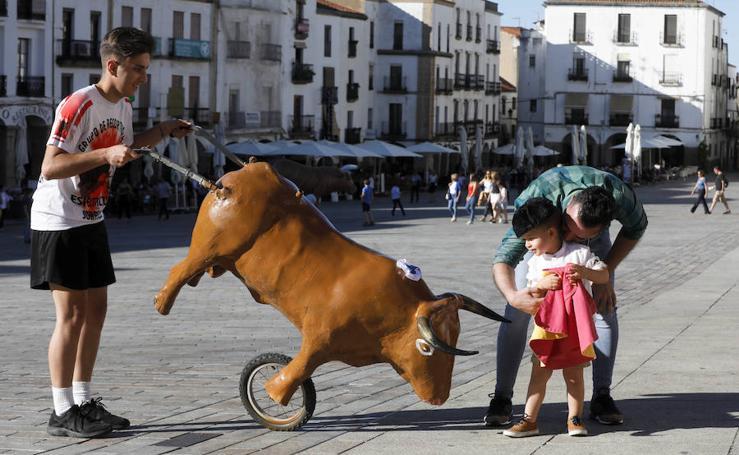 El torrejoncillano Emilio de Justo lleva los toros a la Plaza Mayor de Cáceres